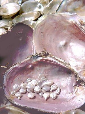 свойства жемчуга