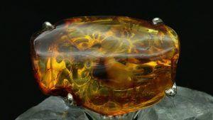 Инклюзы в украшениях из янтаря