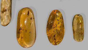 Копал: свойства камня, применение в ювелирном деле
