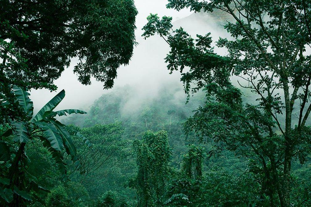 Рудники Muzo в Колумбии, где добывают одни из самых ценных изумрудов в мире