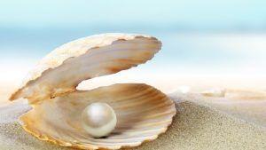 Всемирная ювелирная конфедерация (CIBJO) выпустила руководство по жемчугу, ориентированное на потребителя