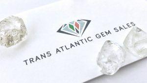 Trans Atlantic Gem Sales зарегистрировала в марте выручку в размере $ 60 млн