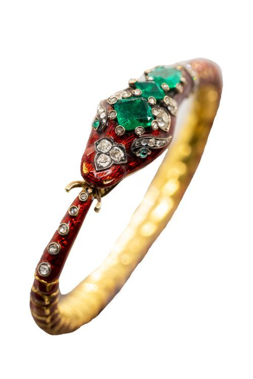 В центре внимания – притягательная красота змей