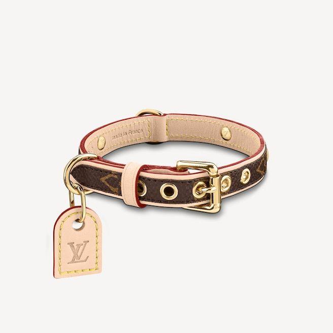Ошейник для собак Baxter от Louis Vuitton