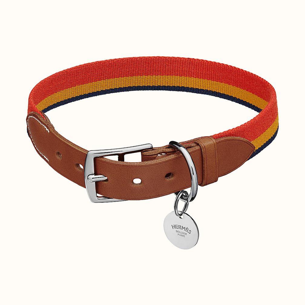 Ошейник для собак Racobar II от Hermès